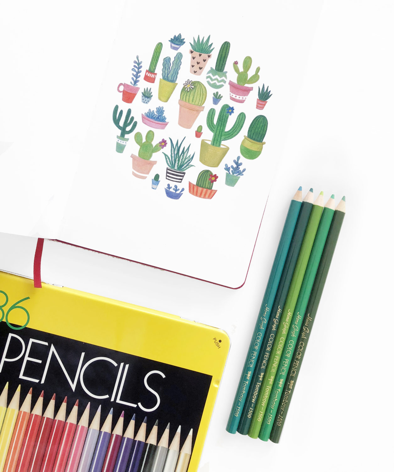 Draw Springtime Succulents Using Tombow S 1500 Colored Pencils Tombow Usa Blog