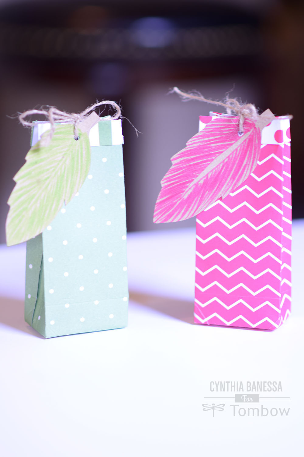 Diy Party Favor Bags And Place Cards Tombow Usa Blog