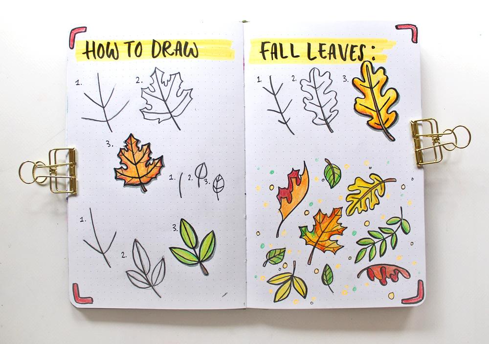 Draw Fall Leaves And Make A Cute Autumn Illustration
