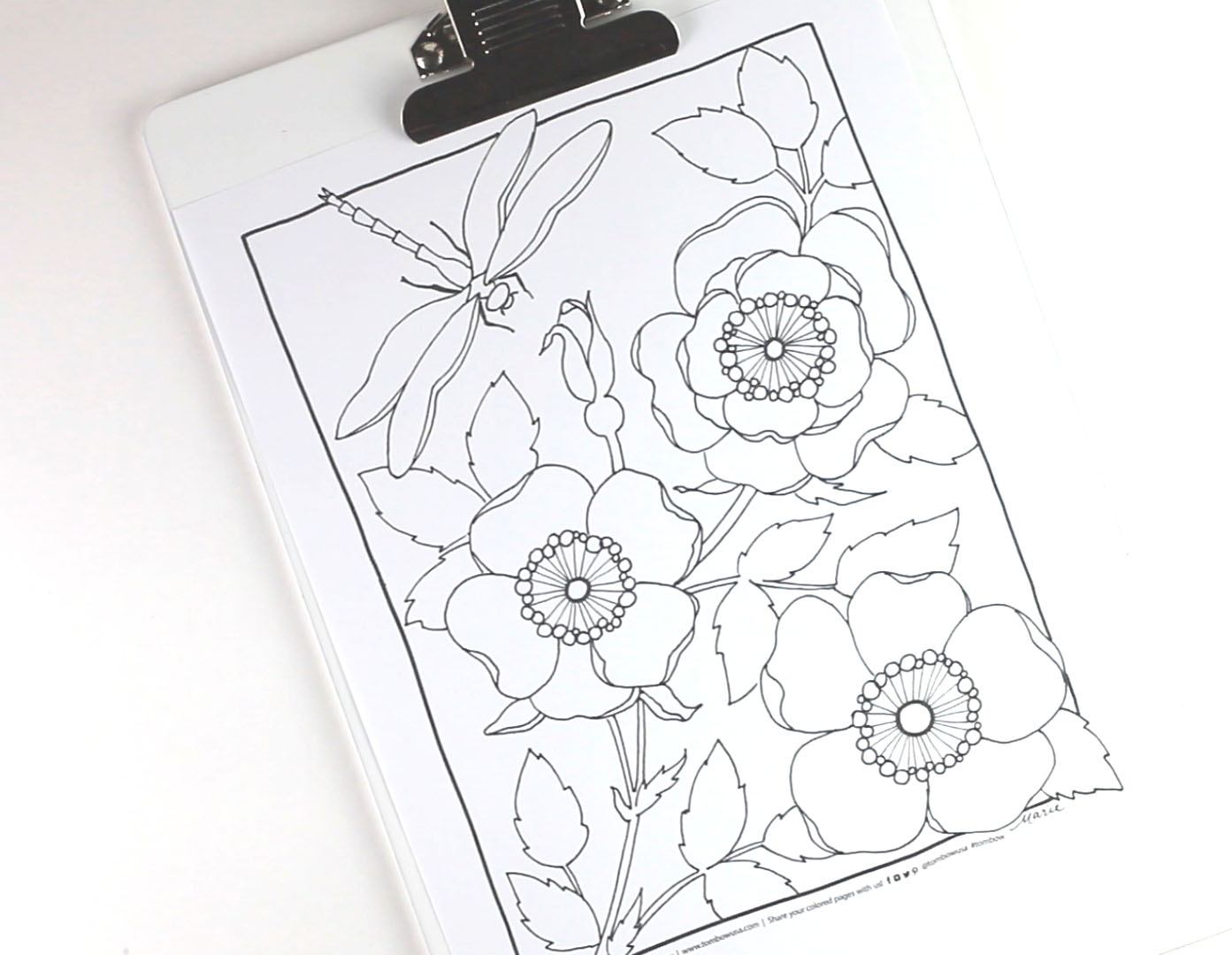 Coloring Pages For Adults That You Can Print : Mixed media coloring using tombow dual brush pens tombow usa